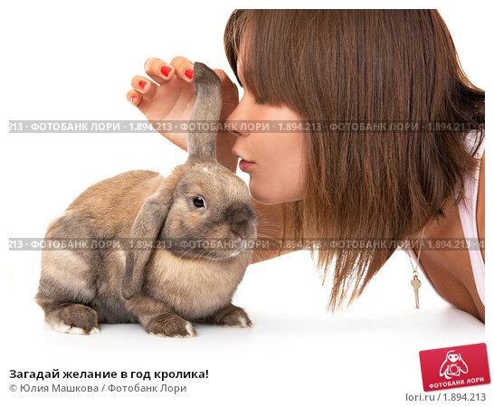 Загадай желание в год кролика! Стоковое фото, фотограф Юлия Машкова / Фотобанк Лори