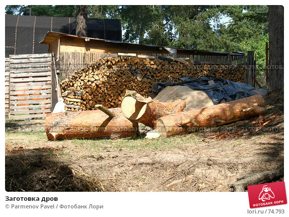 Заготовка дров, фото № 74793, снято 18 августа 2007 г. (c) Parmenov Pavel / Фотобанк Лори