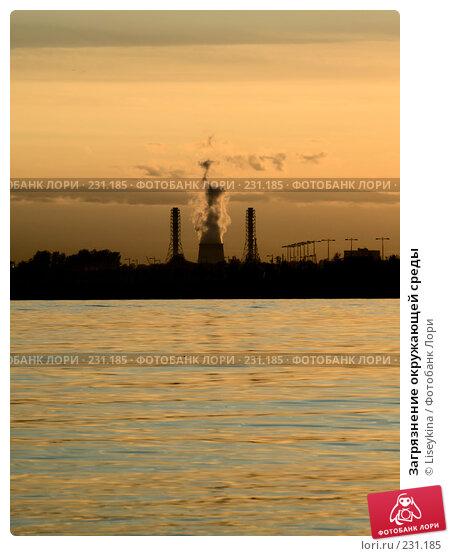 Загрязнение окружающей среды, фото № 231185, снято 11 июня 2006 г. (c) Liseykina / Фотобанк Лори