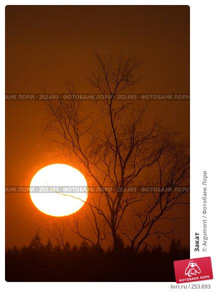 Закат, фото № 253693, снято 29 марта 2008 г. (c) Argument / Фотобанк Лори