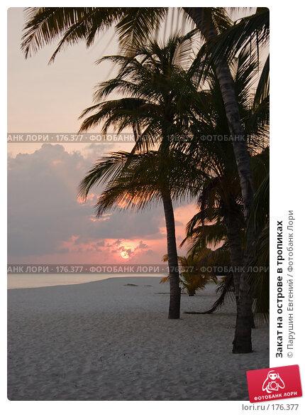 Купить «Закат на острове в тропиках», фото № 176377, снято 22 апреля 2018 г. (c) Парушин Евгений / Фотобанк Лори