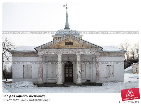 Зал для одного экспоната, фото № 240525, снято 24 февраля 2008 г. (c) Parmenov Pavel / Фотобанк Лори