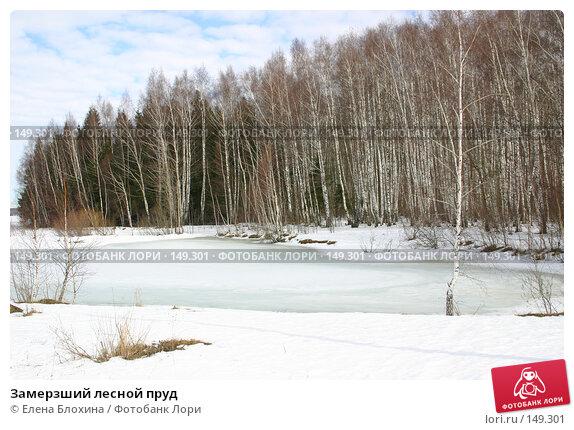 Замерзший лесной пруд, фото № 149301, снято 16 марта 2007 г. (c) Елена Блохина / Фотобанк Лори