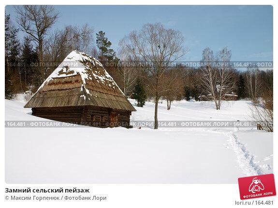 Купить «Замний сельский пейзаж», фото № 164481, снято 16 марта 2005 г. (c) Максим Горпенюк / Фотобанк Лори