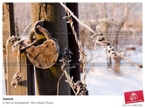 Купить «Замок», фото № 243321, снято 11 февраля 2008 г. (c) Антон Белицкий / Фотобанк Лори