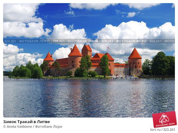 Замок Тракай в Литве, фото № 323261, снято 15 июня 2008 г. (c) Aneta Vaitkiene / Фотобанк Лори