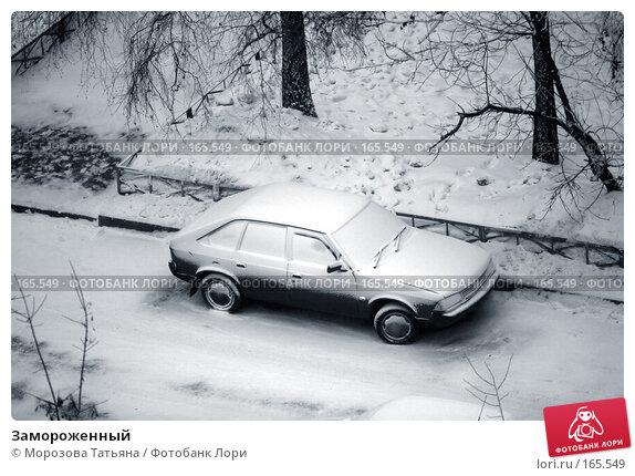 Купить «Замороженный», фото № 165549, снято 20 января 2006 г. (c) Морозова Татьяна / Фотобанк Лори