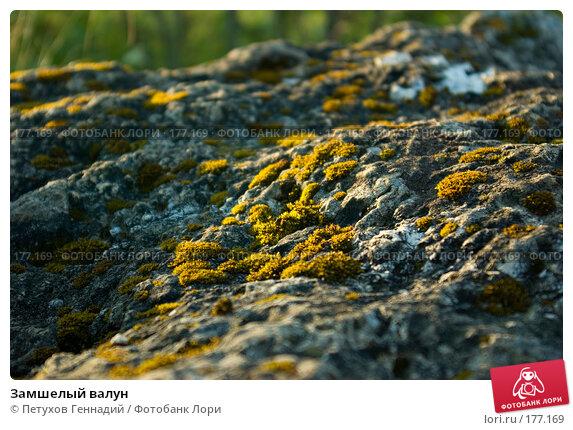 Замшелый валун, фото № 177169, снято 10 августа 2007 г. (c) Петухов Геннадий / Фотобанк Лори