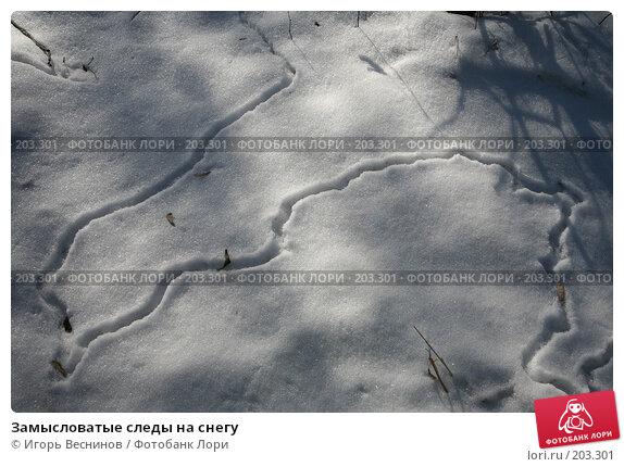 Замысловатые следы на снегу, фото № 203301, снято 16 февраля 2008 г. (c) Игорь Веснинов / Фотобанк Лори
