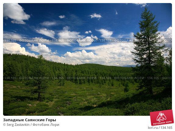 Купить «Западные Саянские Горы», фото № 134165, снято 28 июня 2006 г. (c) Serg Zastavkin / Фотобанк Лори