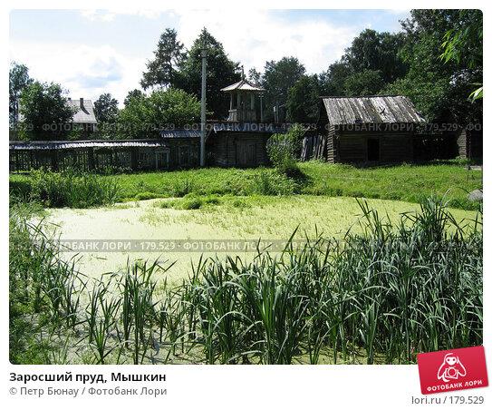 Заросший пруд, Мышкин, фото № 179529, снято 10 июля 2004 г. (c) Петр Бюнау / Фотобанк Лори