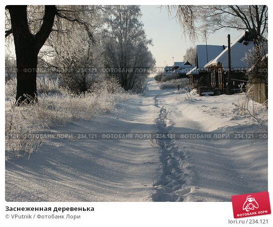 Купить «Заснеженная деревенька», фото № 234121, снято 30 ноября 2004 г. (c) VPutnik / Фотобанк Лори
