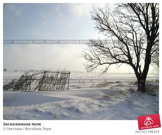 Заснеженное поле, фото № 194517, снято 10 декабря 2016 г. (c) Светлана / Фотобанк Лори