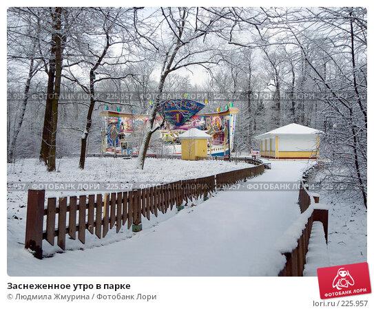 Купить «Заснеженное утро в парке», фото № 225957, снято 16 февраля 2008 г. (c) Людмила Жмурина / Фотобанк Лори
