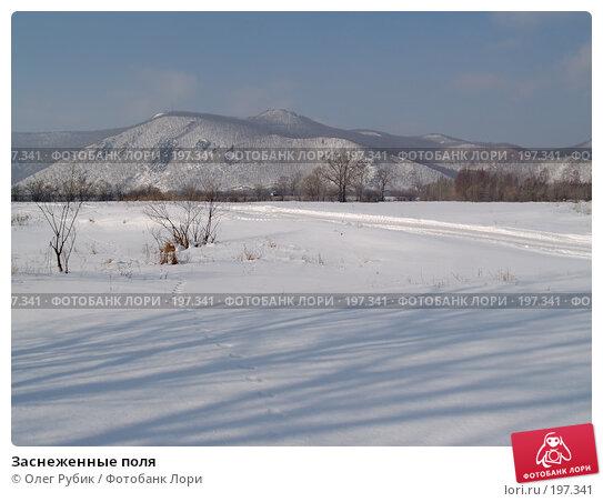 Заснеженные поля, фото № 197341, снято 5 февраля 2008 г. (c) Олег Рубик / Фотобанк Лори