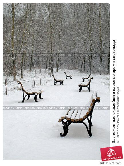Заснеженные скамейки в парке во время снегопада, фото № 99525, снято 24 декабря 2006 г. (c) Parmenov Pavel / Фотобанк Лори