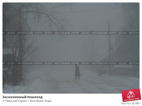 Заснеженный пешеход, фото № 20561, снято 20 ноября 2006 г. (c) Николай Гернет / Фотобанк Лори