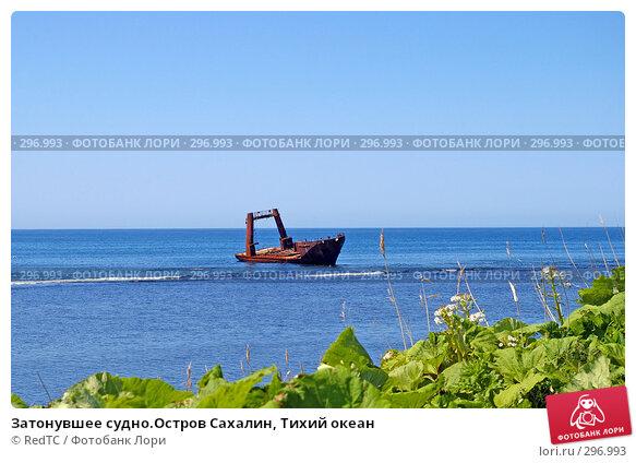 Затонувшее судно.Остров Сахалин, Тихий океан, фото № 296993, снято 23 мая 2008 г. (c) RedTC / Фотобанк Лори