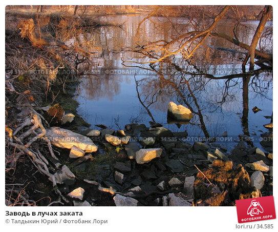 Заводь в лучах заката, фото № 34585, снято 17 апреля 2007 г. (c) Талдыкин Юрий / Фотобанк Лори