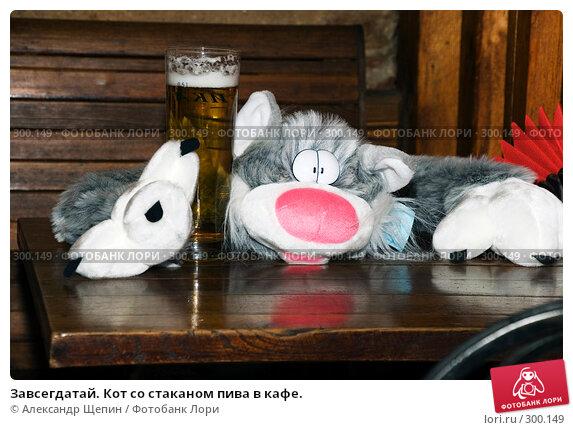 Завсегдатай. Кот со стаканом пива в кафе., эксклюзивное фото № 300149, снято 24 мая 2008 г. (c) Александр Щепин / Фотобанк Лори