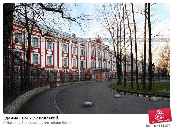 Купить «Здание СПбГУ (12 коллегий)», фото № 114077, снято 4 ноября 2007 г. (c) Наталья Белотелова / Фотобанк Лори