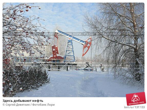 Здесь добывают нефть, фото № 137133, снято 4 декабря 2007 г. (c) Сергей Девяткин / Фотобанк Лори
