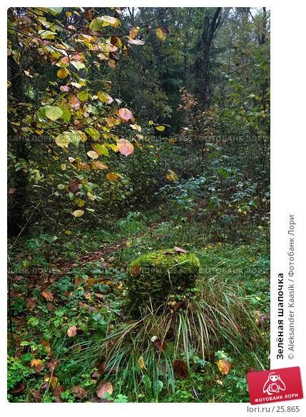 Зелёная шапочка, фото № 25865, снято 28 октября 2016 г. (c) Aleksander Kaasik / Фотобанк Лори