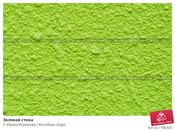 Зеленая стена, фото № 198837, снято 12 августа 2007 г. (c) Ирина Игумнова / Фотобанк Лори
