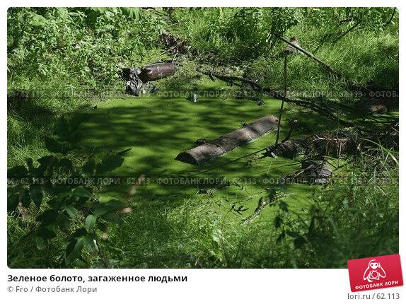 Зеленое болото, загаженное людьми, фото № 62113, снято 14 июля 2007 г. (c) Fro / Фотобанк Лори