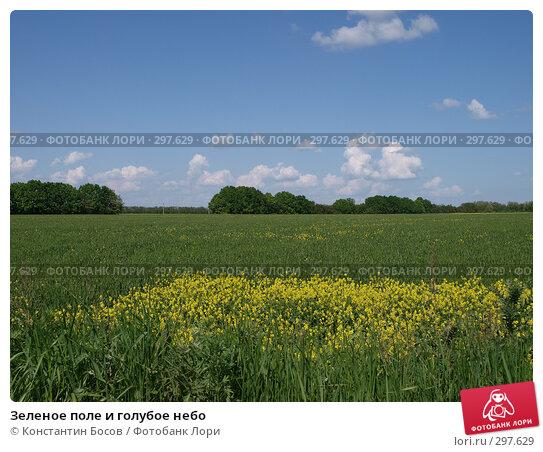 Зеленое поле и голубое небо, фото № 297629, снято 27 октября 2016 г. (c) Константин Босов / Фотобанк Лори