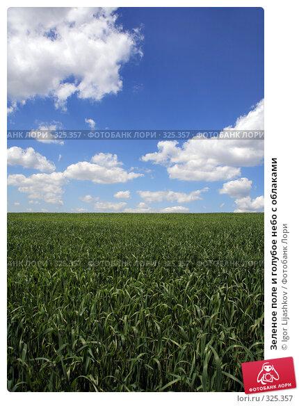 Зеленое поле и голубое небо с облаками, фото № 325357, снято 14 июня 2008 г. (c) Igor Lijashkov / Фотобанк Лори