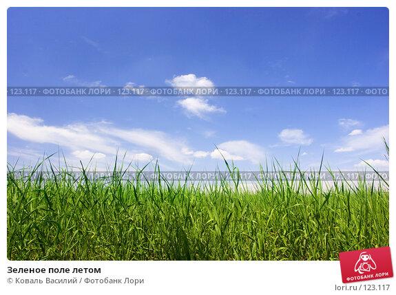 Зеленое поле летом, фото № 123117, снято 9 июня 2006 г. (c) Коваль Василий / Фотобанк Лори