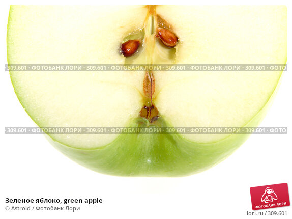 Зеленое яблоко, green apple, фото № 309601, снято 26 мая 2005 г. (c) Astroid / Фотобанк Лори