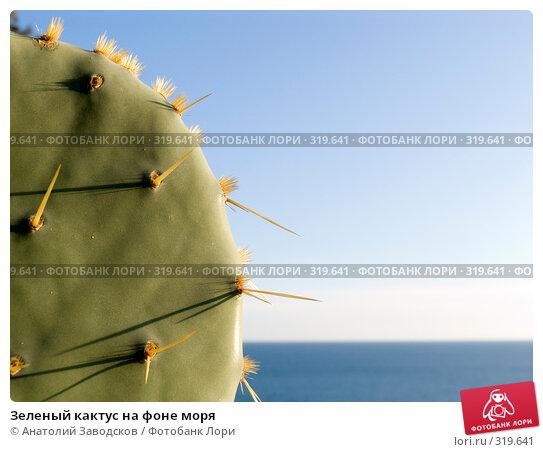 Зеленый кактус на фоне моря, фото № 319641, снято 26 сентября 2007 г. (c) Анатолий Заводсков / Фотобанк Лори