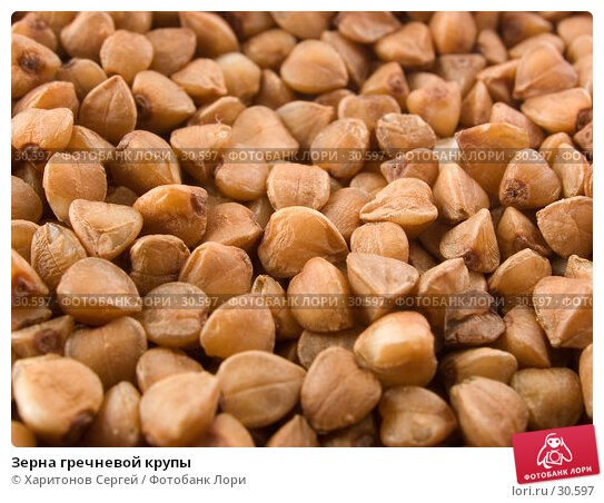 Зерна гречневой крупы, фото № 30597, снято 18 февраля 2007 г. (c) Харитонов Сергей / Фотобанк Лори