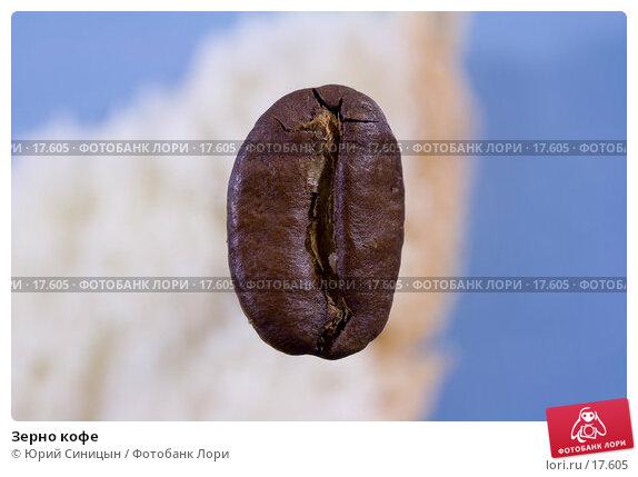 Зерно кофе, фото № 17605, снято 16 января 2007 г. (c) Юрий Синицын / Фотобанк Лори