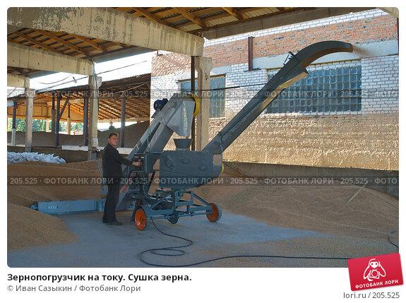 Зернопогрузчик на току. Сушка зерна., фото № 205525, снято 6 сентября 2004 г. (c) Иван Сазыкин / Фотобанк Лори