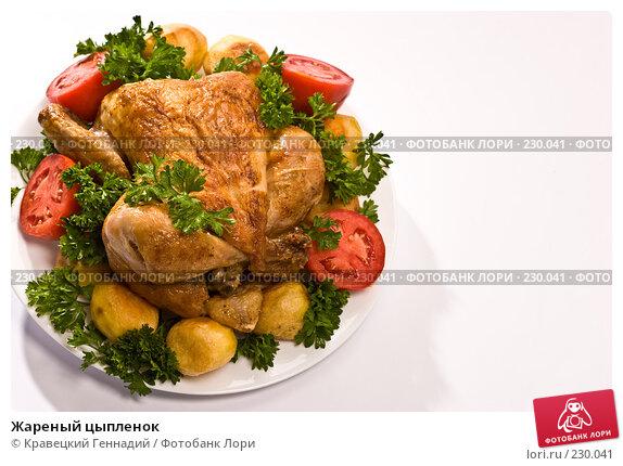 Жареный цыпленок, фото № 230041, снято 5 сентября 2005 г. (c) Кравецкий Геннадий / Фотобанк Лори