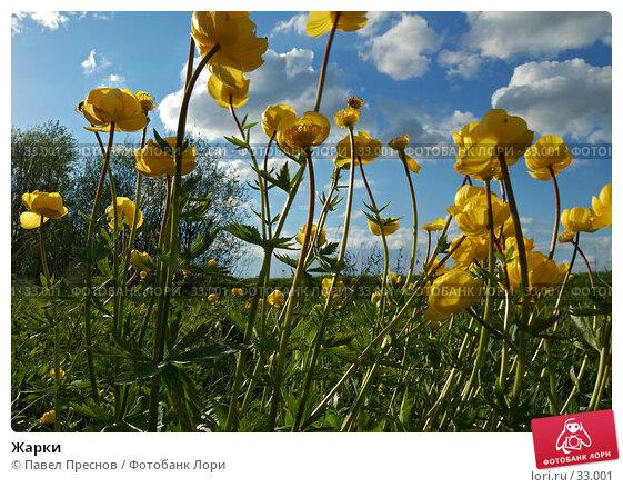 Жарки, фото № 33001, снято 28 мая 2006 г. (c) Павел Преснов / Фотобанк Лори