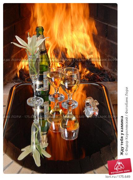 Купить «Жду тебя у камина», фото № 175649, снято 20 апреля 2018 г. (c) Федор Королевский / Фотобанк Лори