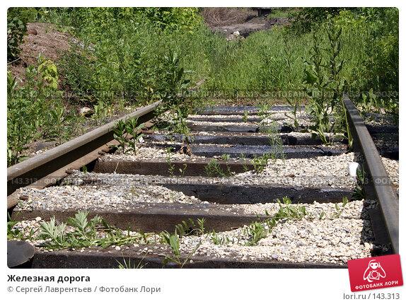 Железная дорога, фото № 143313, снято 20 июня 2004 г. (c) Сергей Лаврентьев / Фотобанк Лори
