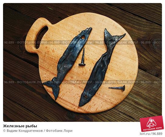 Железные рыбы, фото № 96889, снято 29 апреля 2017 г. (c) Вадим Кондратенков / Фотобанк Лори