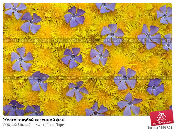 Желто-голубой весенний фон, фото № 169321, снято 29 марта 2017 г. (c) Юрий Брыкайло / Фотобанк Лори