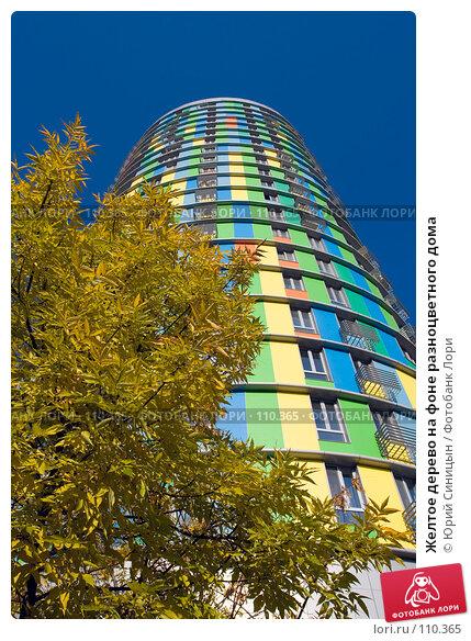 Купить «Желтое дерево на фоне разноцветного дома», фото № 110365, снято 26 сентября 2007 г. (c) Юрий Синицын / Фотобанк Лори