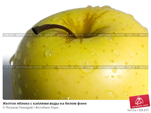 Желтое яблоко с каплями воды на белом фоне, фото № 125617, снято 4 ноября 2007 г. (c) Петухов Геннадий / Фотобанк Лори