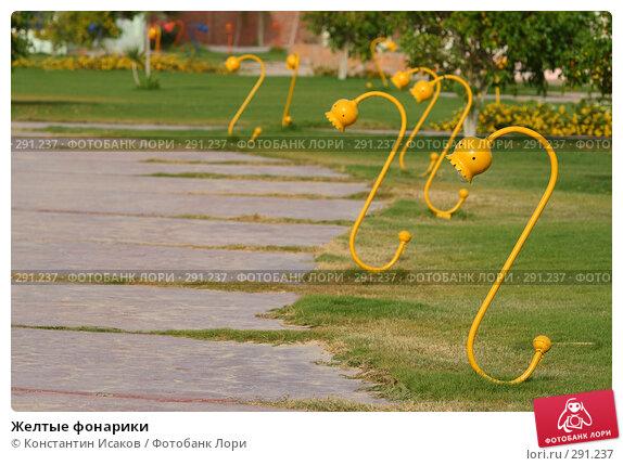 Купить «Желтые фонарики», фото № 291237, снято 14 мая 2008 г. (c) Константин Исаков / Фотобанк Лори