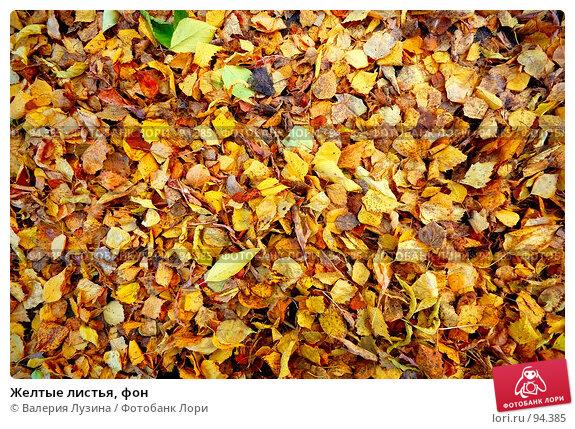 Желтые листья, фон, фото № 94385, снято 2 октября 2007 г. (c) Валерия Потапова / Фотобанк Лори