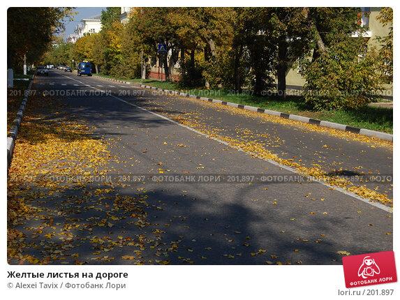 Купить «Желтые листья на дороге», эксклюзивное фото № 201897, снято 30 сентября 2007 г. (c) Alexei Tavix / Фотобанк Лори