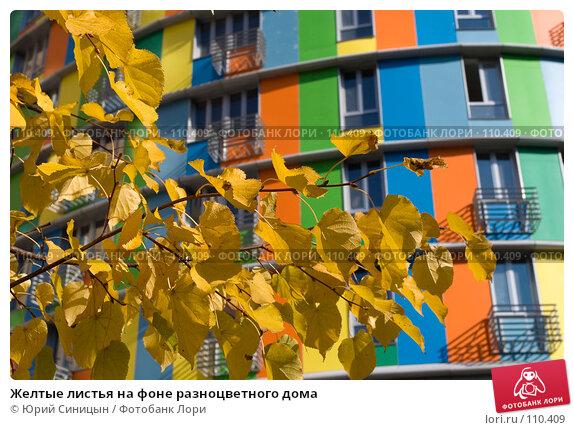 Купить «Желтые листья на фоне разноцветного дома», фото № 110409, снято 26 сентября 2007 г. (c) Юрий Синицын / Фотобанк Лори