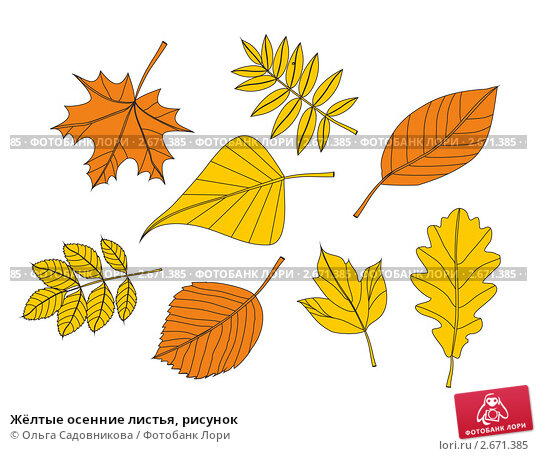 листья рисунки картинки